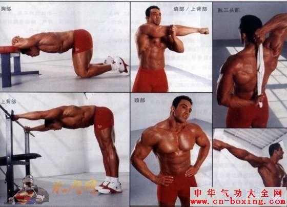 肌肉拉伸动作图解