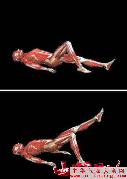 晚上床上锻炼方法 久坐人群长时间躬背屈髋,久之造成髂腰肌过紧,容易
