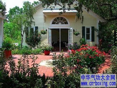 庭院种槙植物的风水讲究_居住者-庭院-风水-枯树-